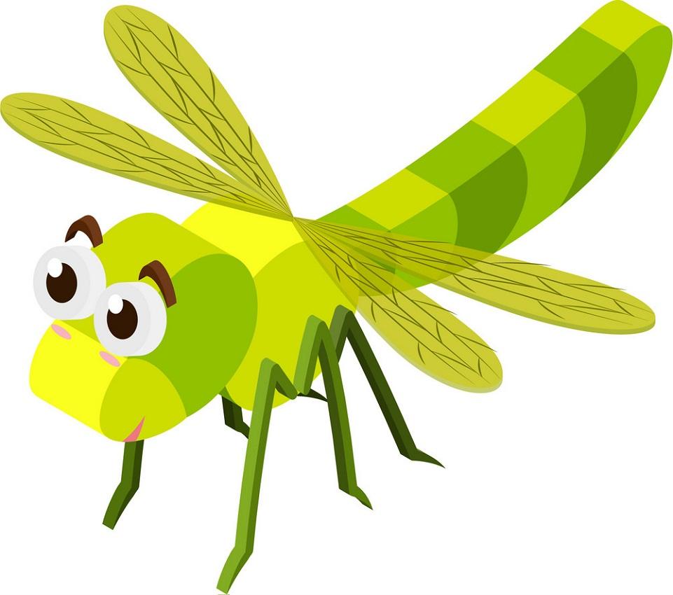 dragonfly 3d design