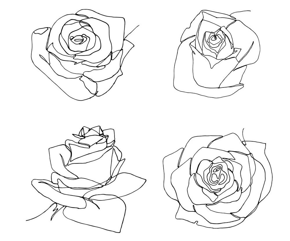 four roses outline