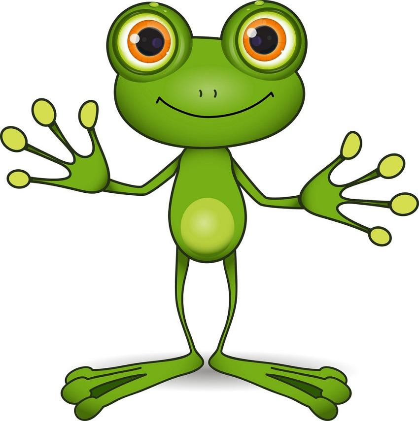 frog standing
