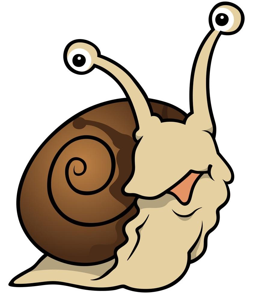 funny snail