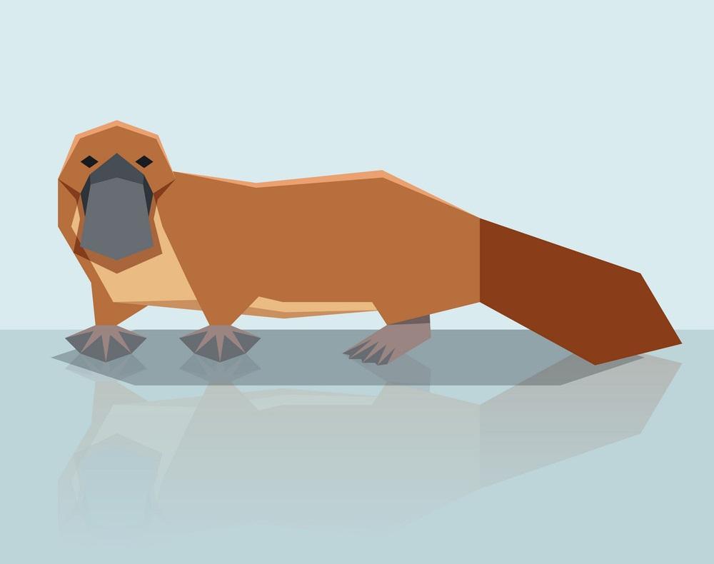 geometric platypus design