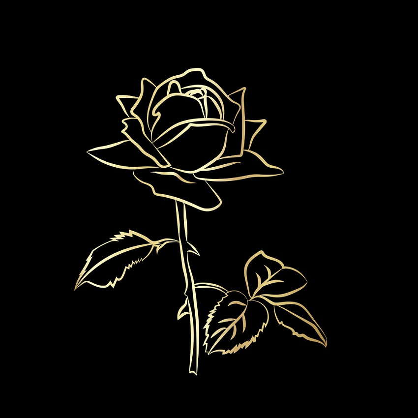 gold rose outline on black background
