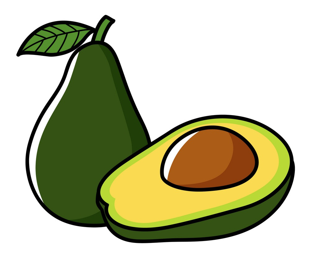 graphic of avocado