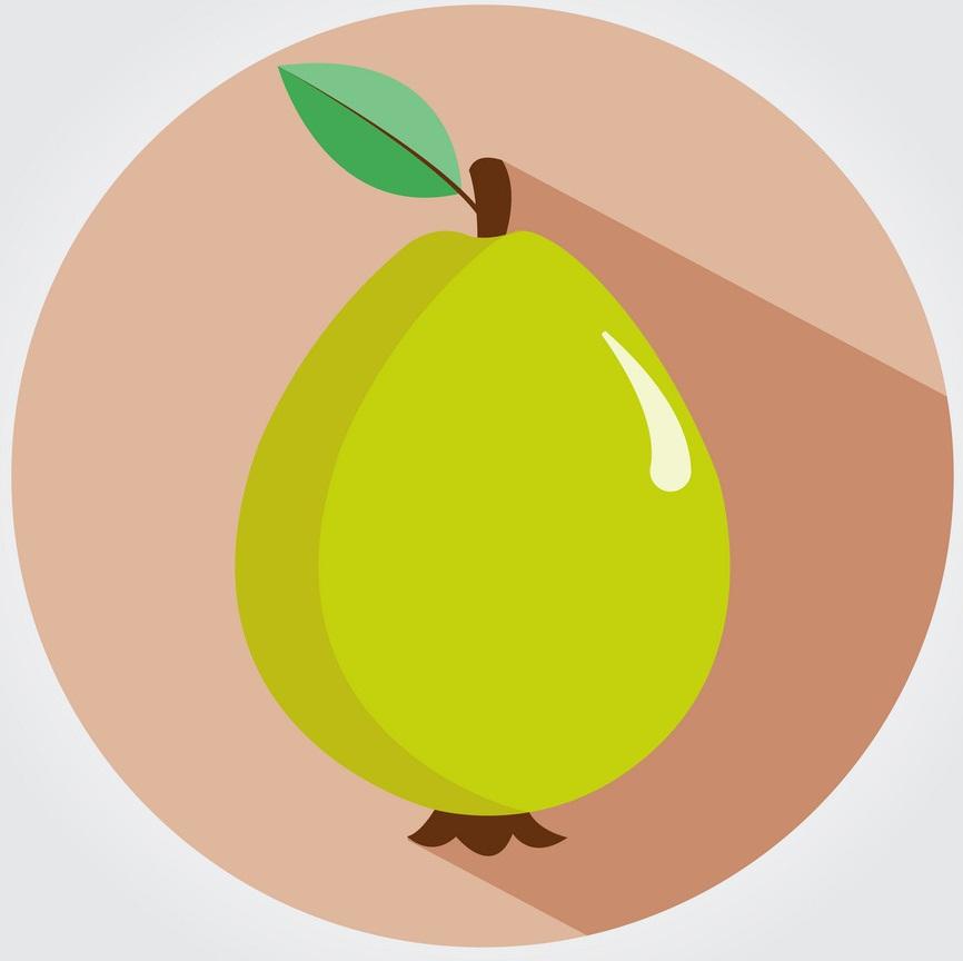 guava fruit logo