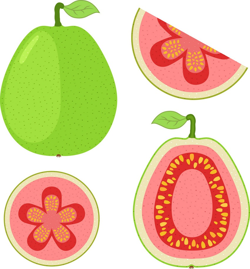 guava with slices