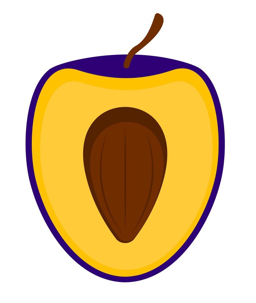 half of plum icon