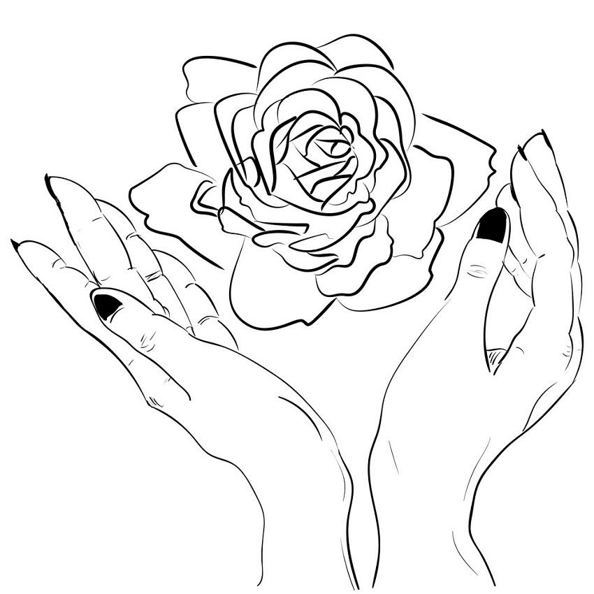 hands holding rose outline