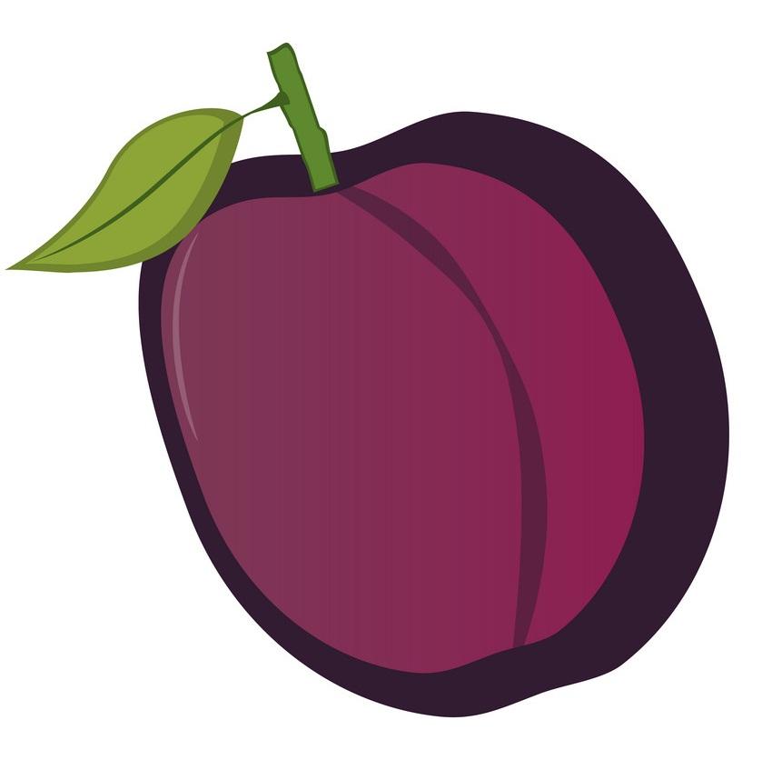 isolated plum
