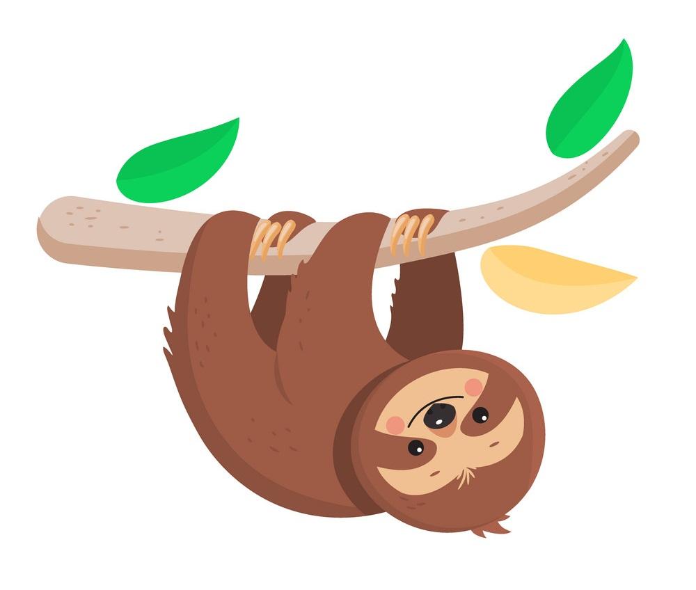 joyful sloth hanging on a branch