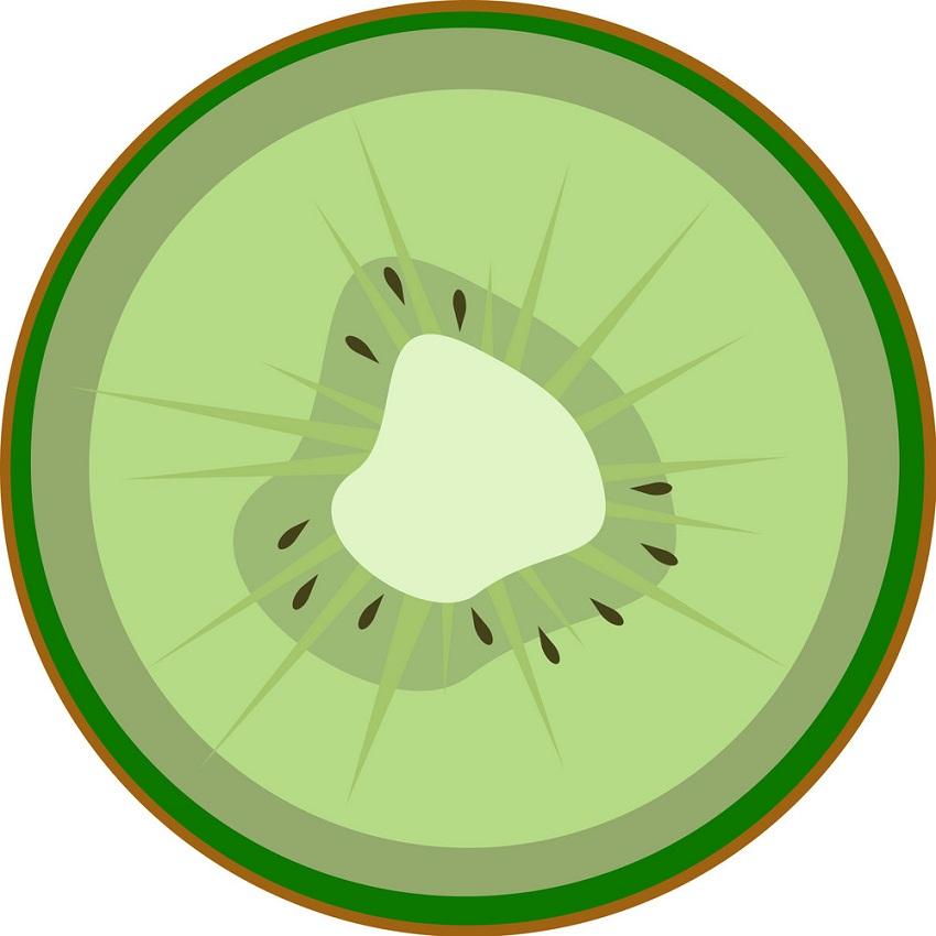 kiwi slice flat icon