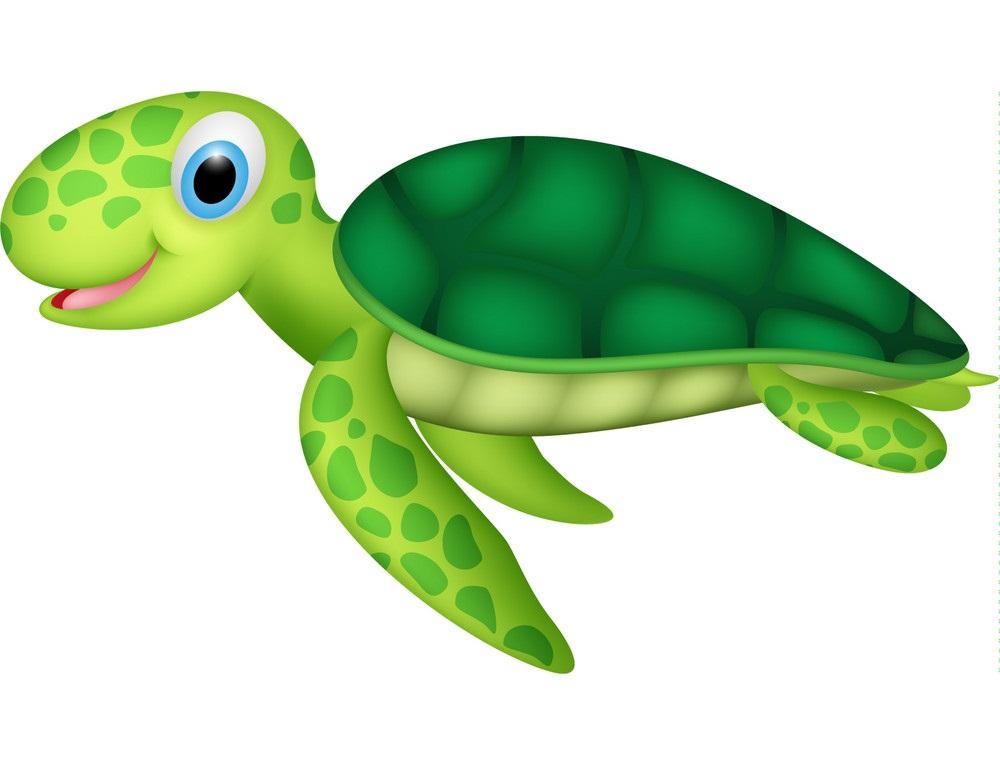 little cute sea turtle