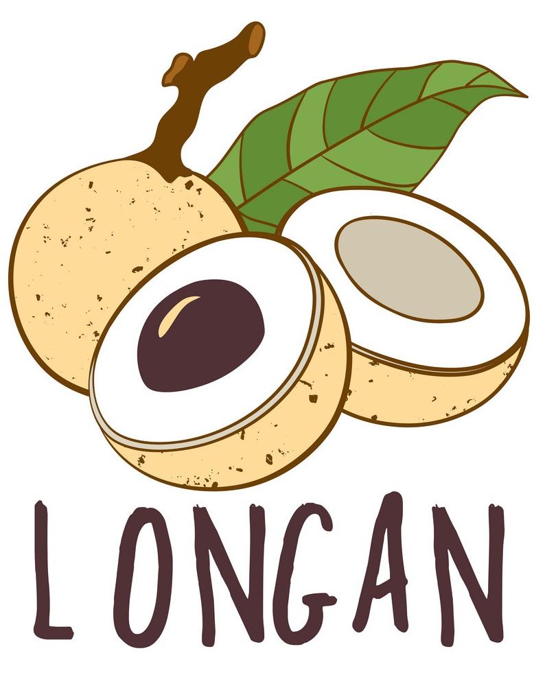 longan 1