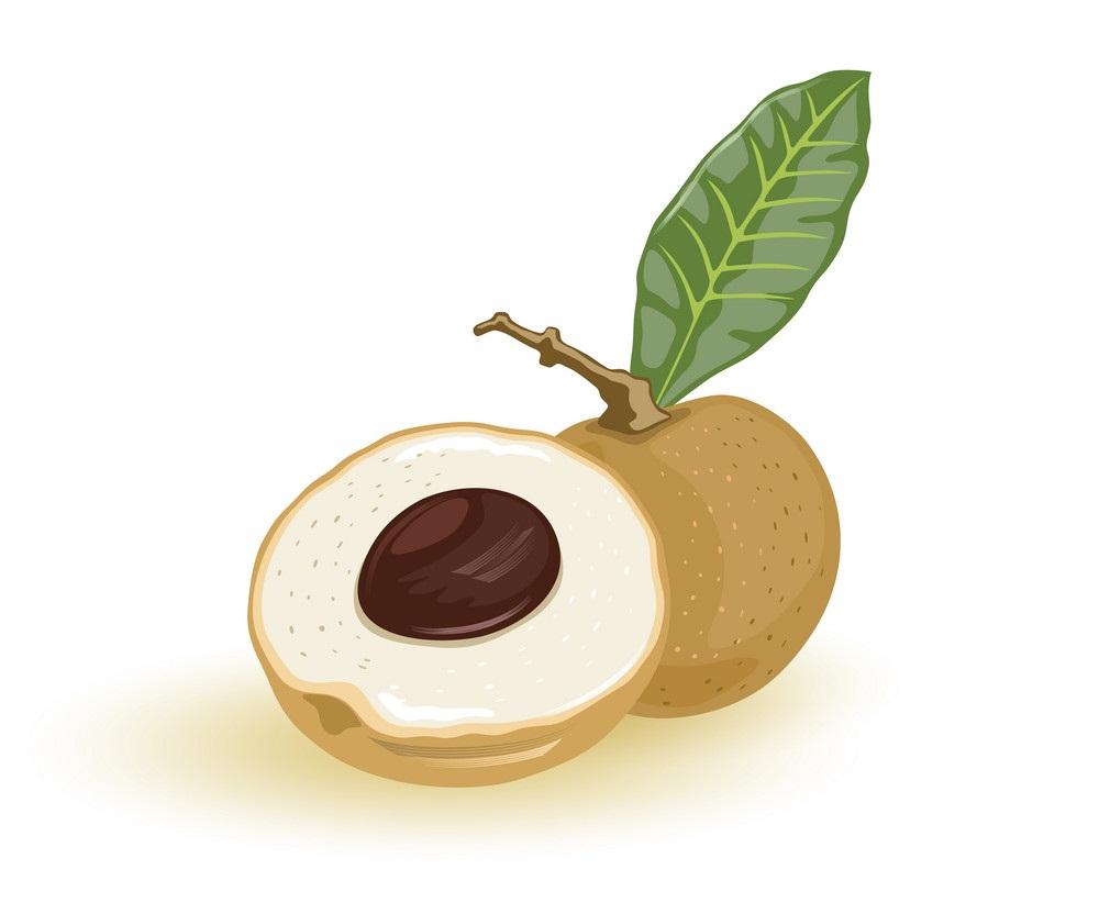 longan fruit 2