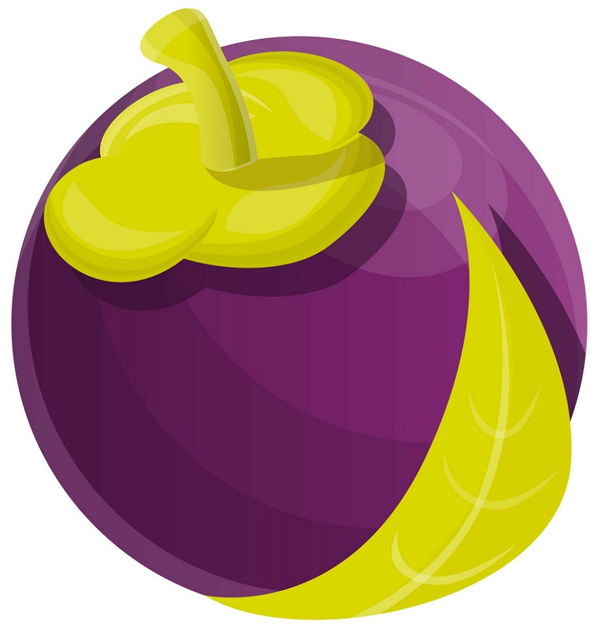 mangosteen fruit 1