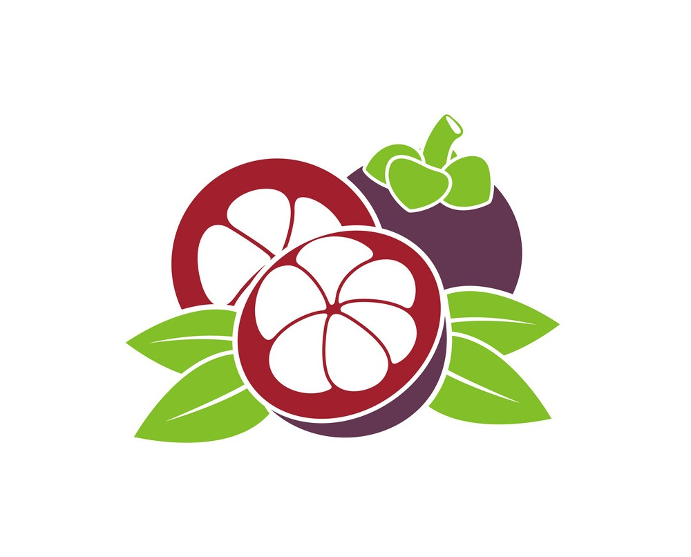 mangosteen fruit icon