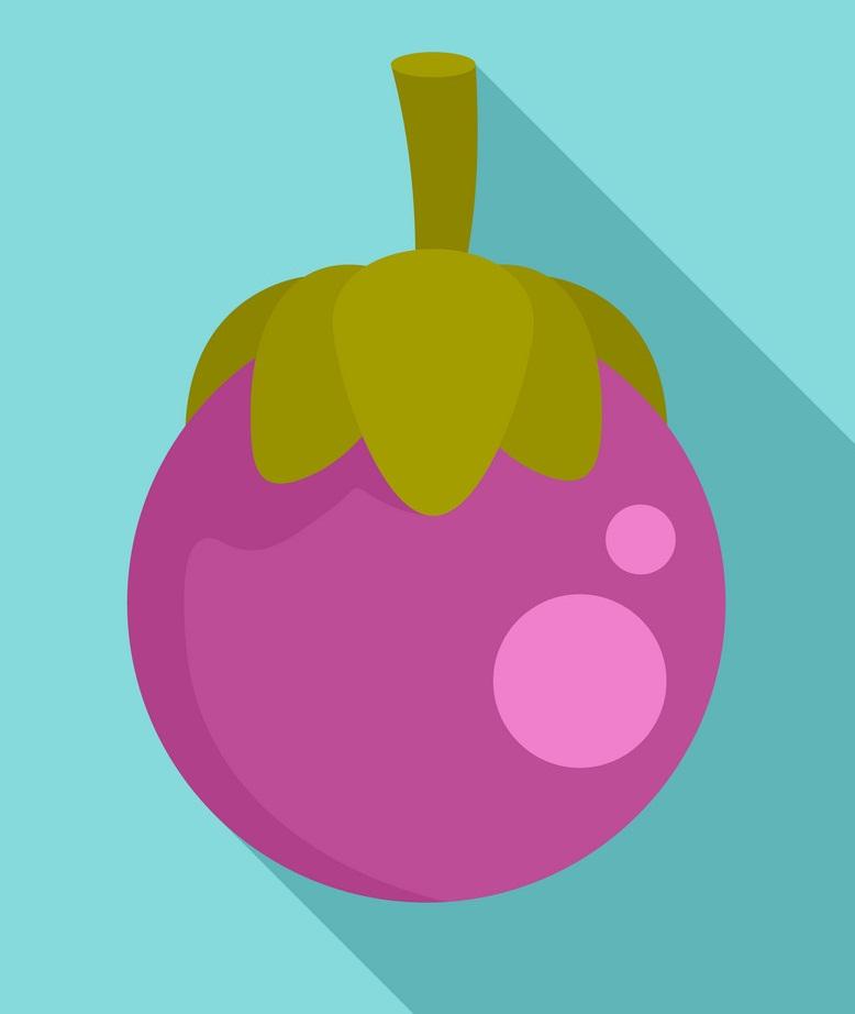 mangosteen icon on blue background