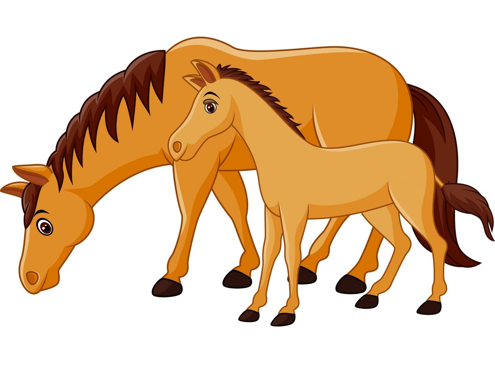 mother horse and baby