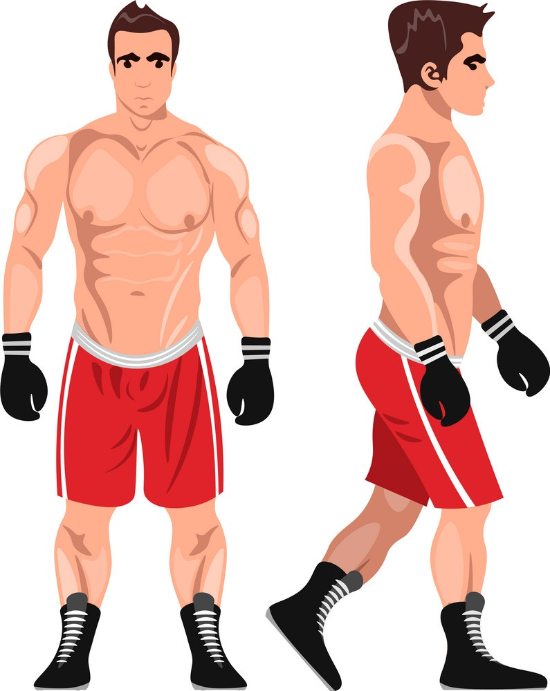 muscle boxer man view