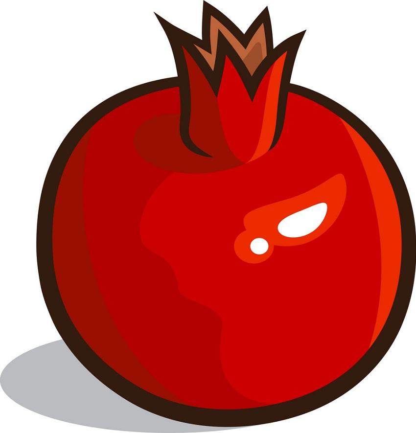 normal pommegranate