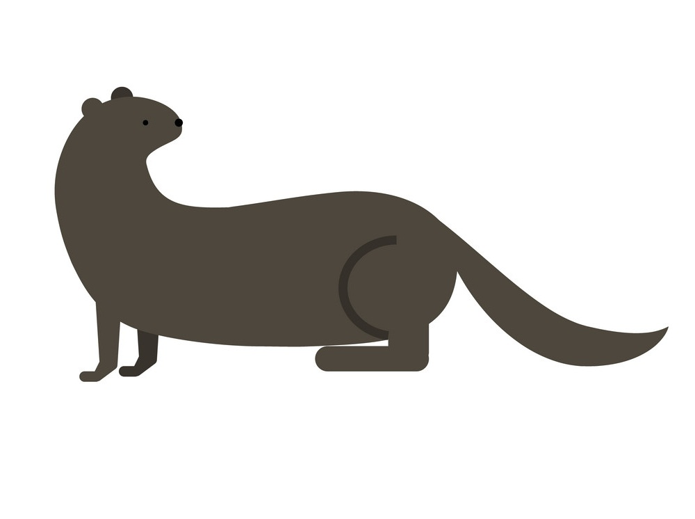 otter flat design