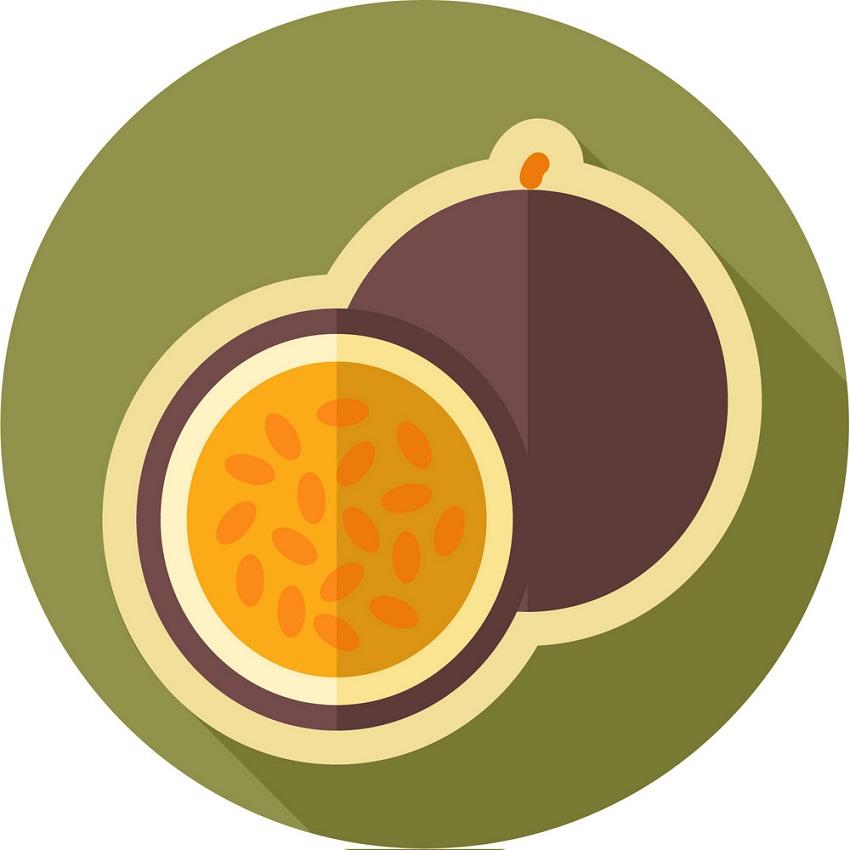 passion fruit logo 1