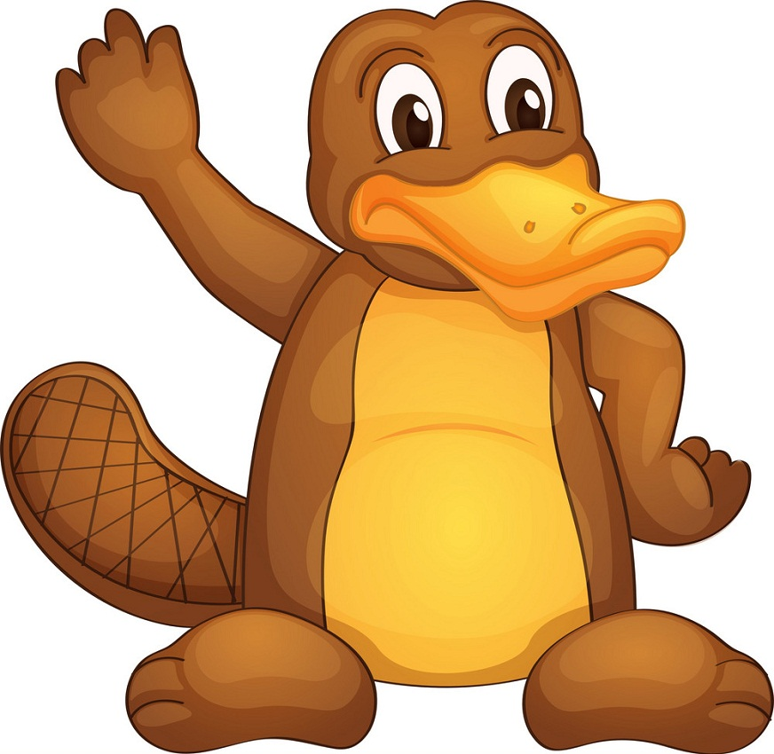 platypus waving hand