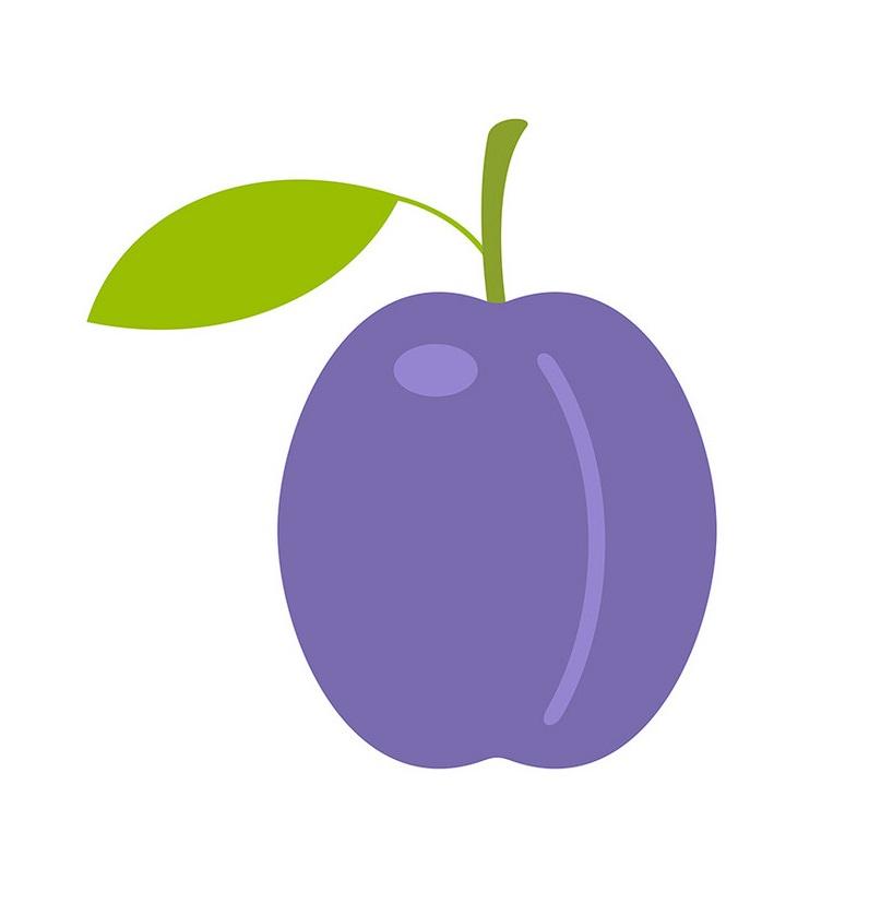 plum flat design