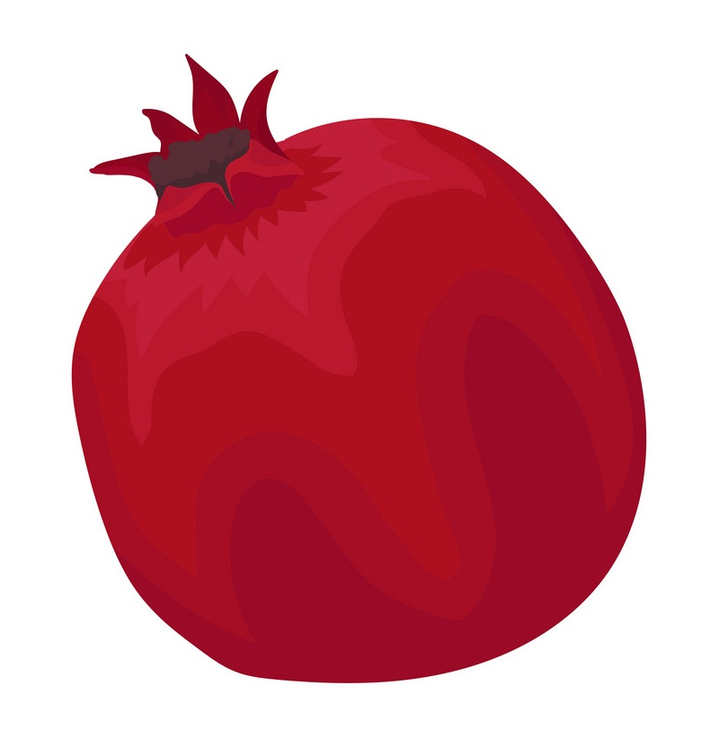 pommegranate flat icon
