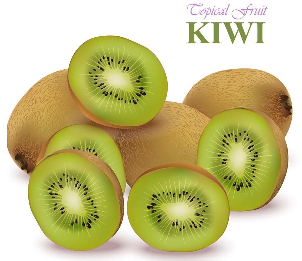 realistic fresh kiwi fruits