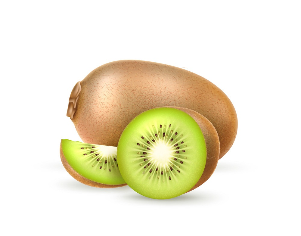 realistic fresh kiwi