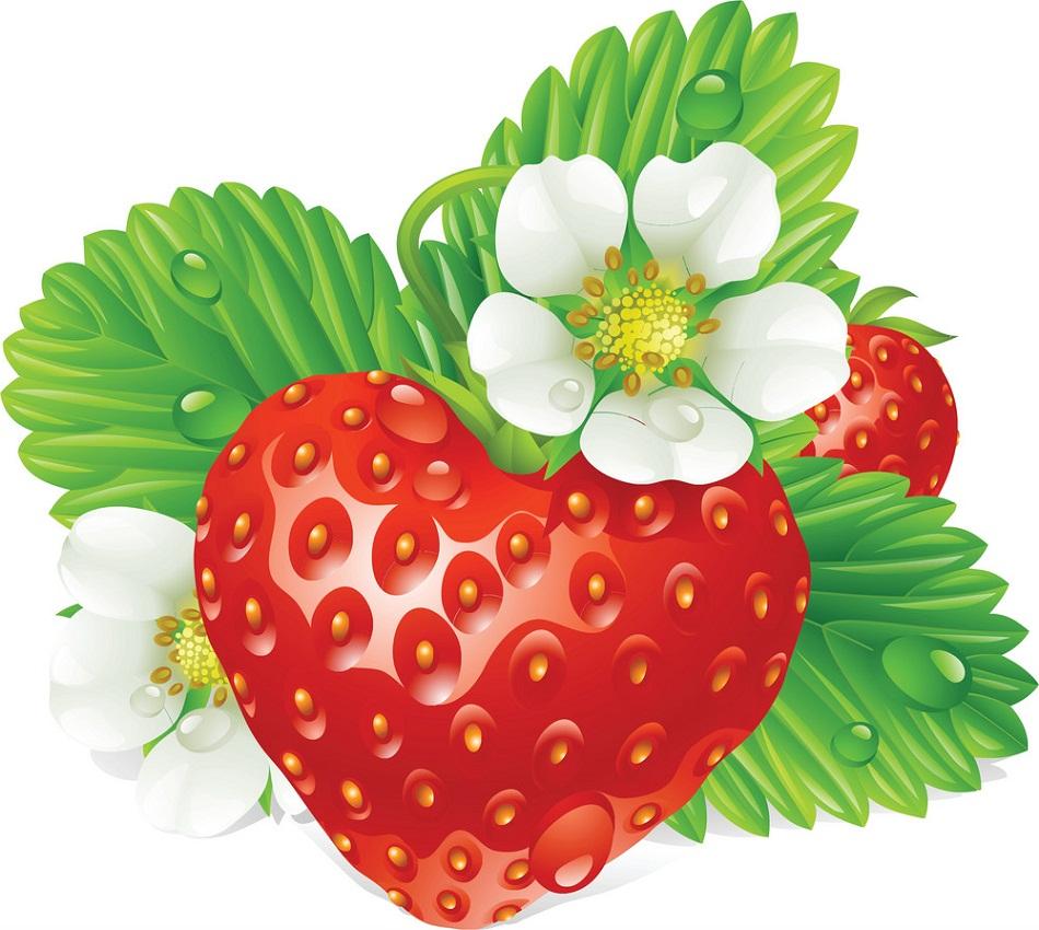 realistic fresh strawberry
