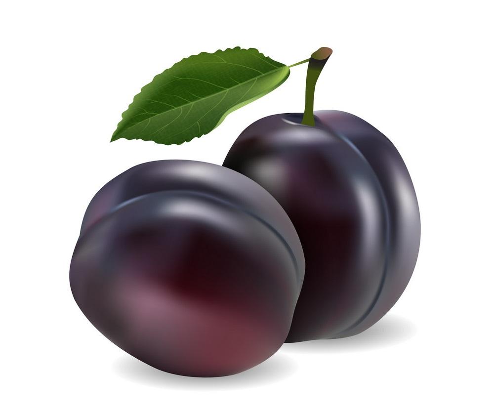 realistic plum fruits