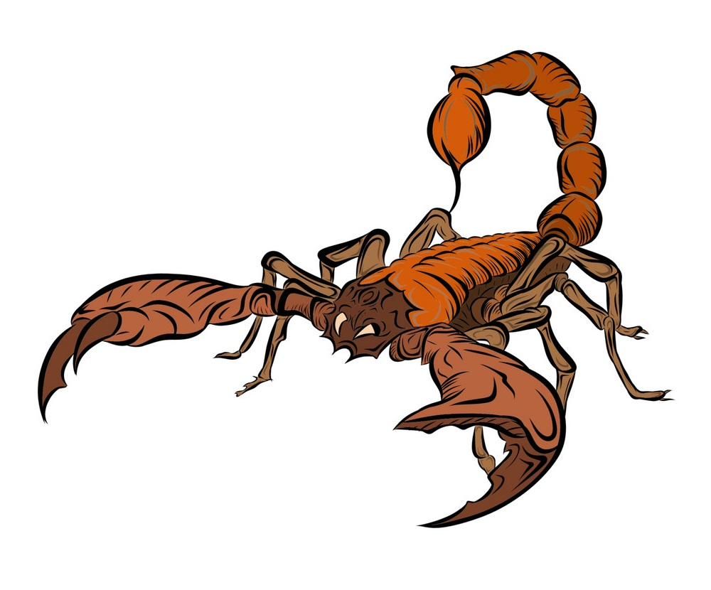 realistic scorpion