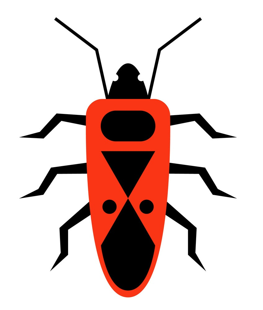red beetle 1