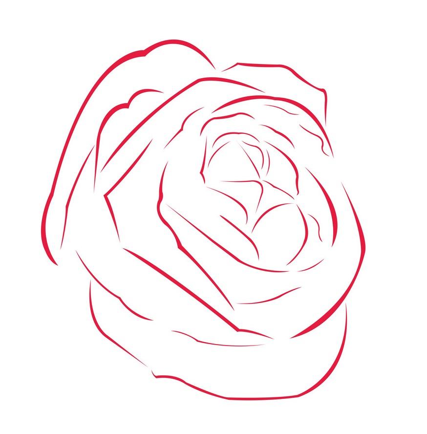 red rose outline