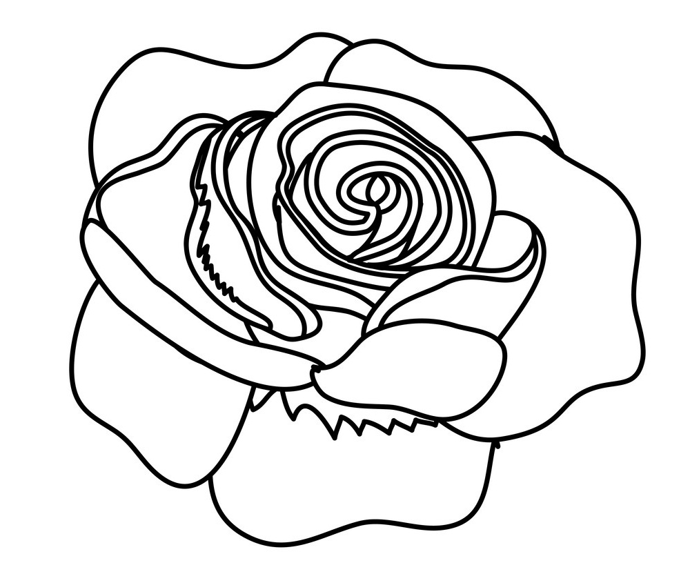 rose outline 1