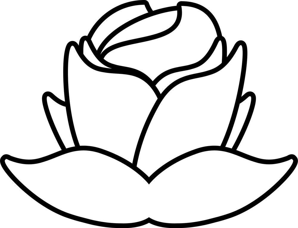 rose outline 7