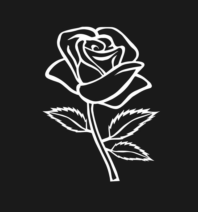 rose outline on black background