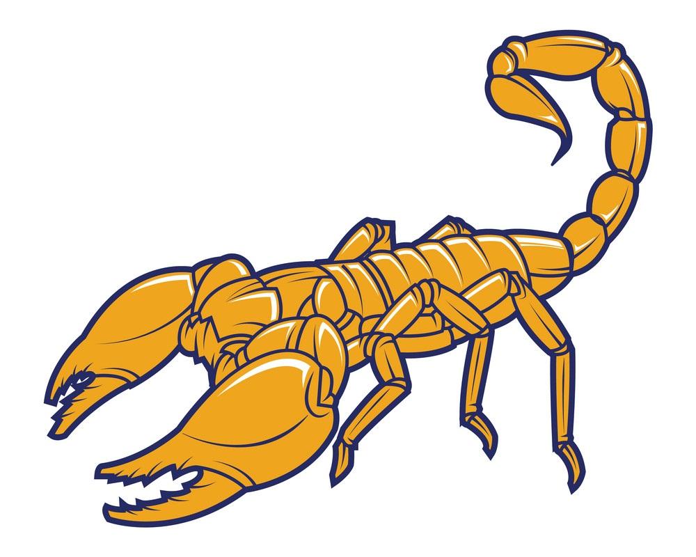scorpion mascot