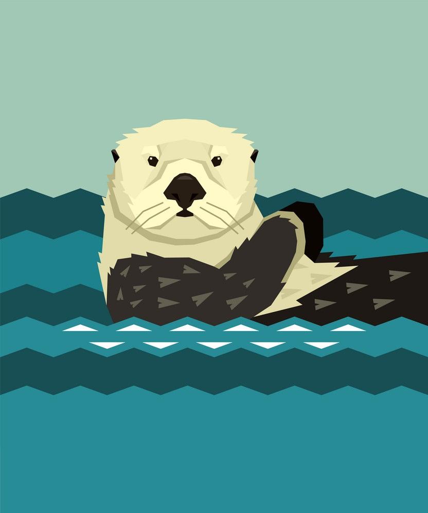 sea otter floating