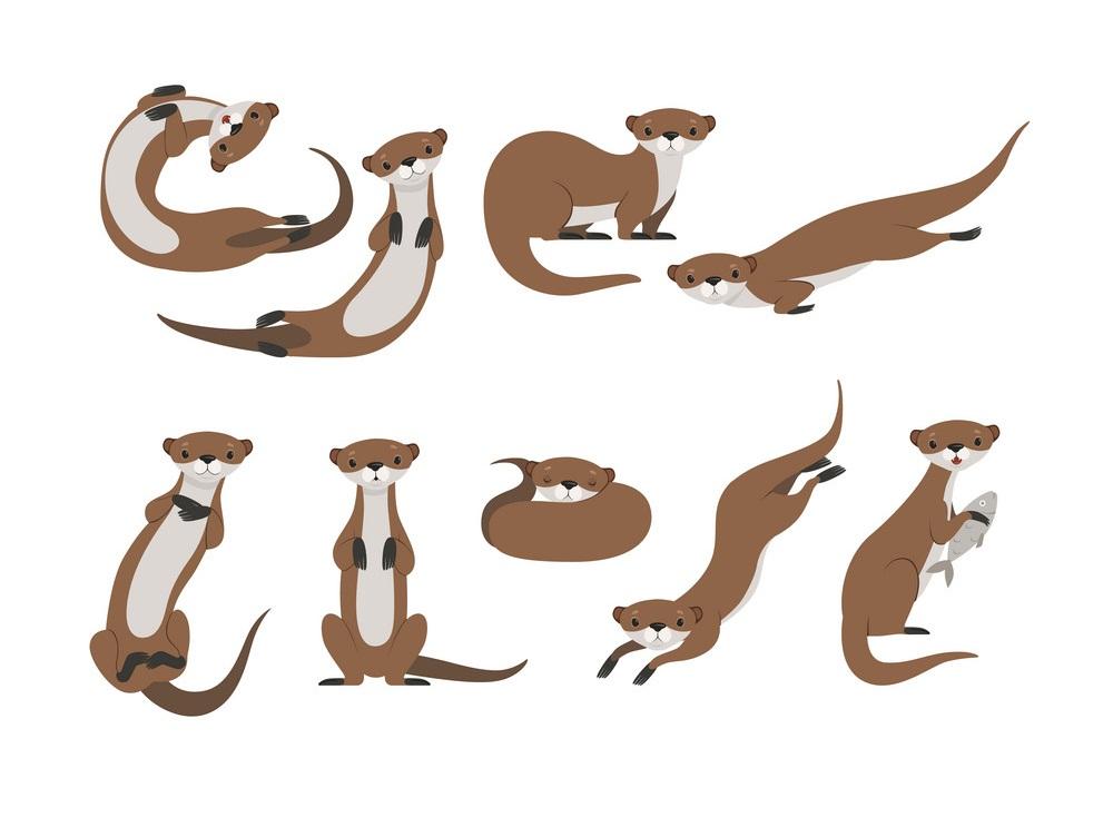 set of cute otters