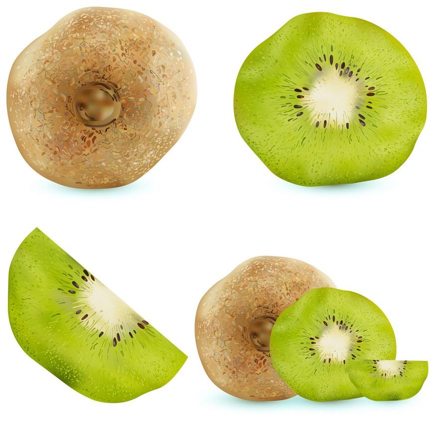 set of realistic kiwi fruit