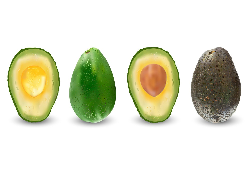 set of realistic ripe avocado