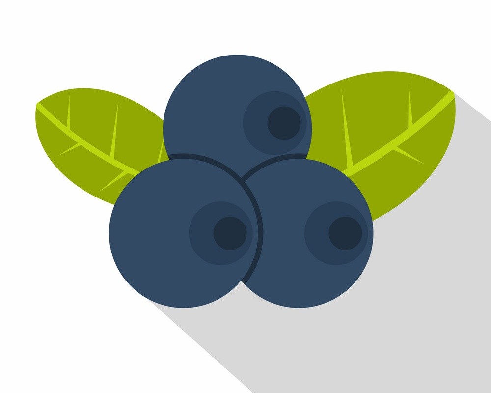 simple blueberry icon