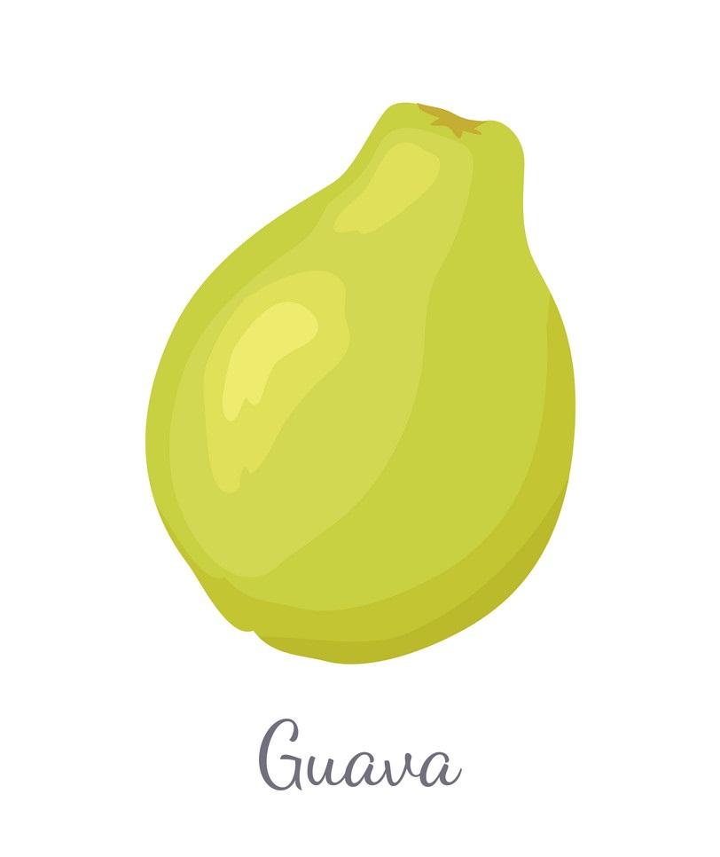 simple guava fruit