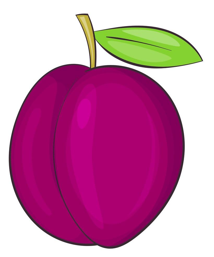 simple red plum