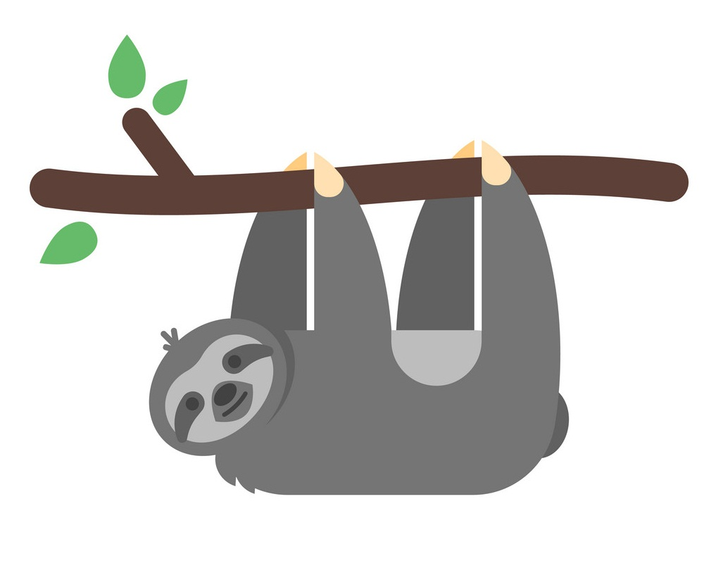 sloth hanging on a branch flat design