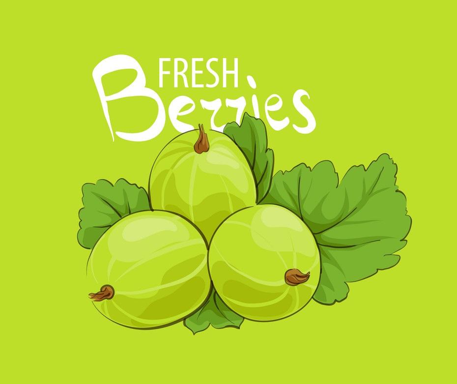 sweet ripe gooseberry on green background