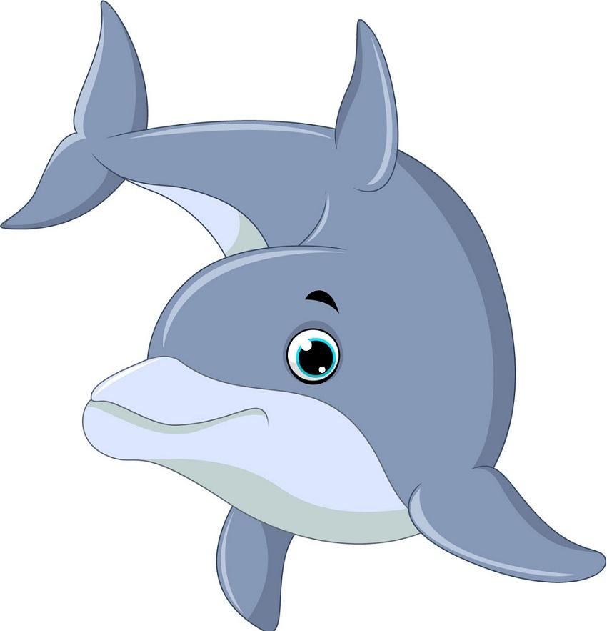 Dolphin Clipart - Clipart.World