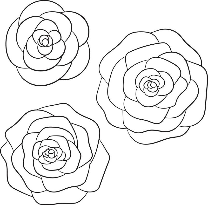 three black roses outline